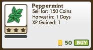 Peppermint in Market