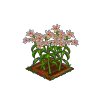 Wither Bunch Electric Lily-icon