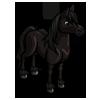 Black Belgian Horse-icon