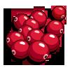 Cranberry-icon