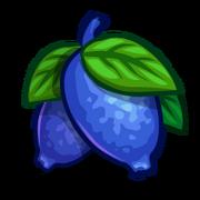 Honeyberry-icon