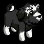 Black Terrier Puppy-icon