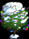 Blood Orange Tree9-icon