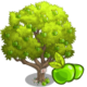 Manchineel Tree-icon