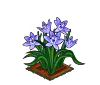 Perfect Spring Squill-icon