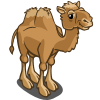 Bactrian Camel-icon