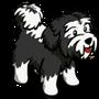 Black Terrier-icon