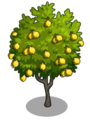 Ponderosa Lemon2-icon