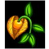 Caped Gooseberry-icon