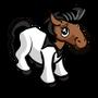 Disco Foal-icon
