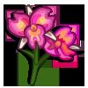 Hawaiian Orchid-icon