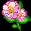 Plum Blossom-icon