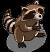 Raccoons-icon