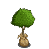 Sapling-icon