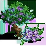 Star Flower Tree-icon
