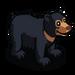 Sun Bear-icon