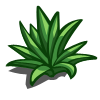 Agave-icon
