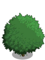 Alma Fig Tree1-icon.png