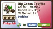 Big cocoa truffle market