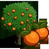 Orangenbaum-icon