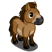 Przewalski Mini Horse-icon