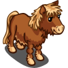 Dartmoor Pony-icon