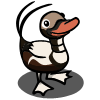 Long-tailed Duck-icon