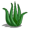 AloeVera-icon