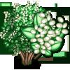 Japanese Privet Tree-icon