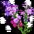 Parisian Lavender-icon