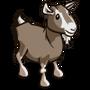 Toggenburg Goat-icon