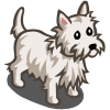 Westie-icon