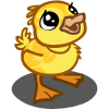 Yellow Duckling-icon