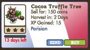 Cocoa truffle tree market