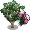Ironwood Tree-icon