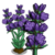 Lavender (bloom)-icon