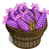 Purple Sweet Corn Bushel-icon