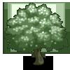 Wild Pear-icon