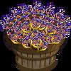 DNA Licorice Bushel-icon