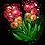 Jingleberry-icon