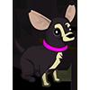 Parti Chihuahua-icon