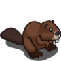Beaver-icon
