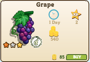 Grape-market info