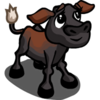 Australian Freisian Sahiwal Calf-icon