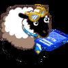 Gap Year Sheep-icon