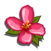 Pink Wildflower-icon