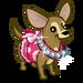 Fashionable Chihuahua-icon