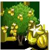 StarfruitTree-icon