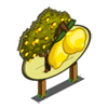 Lemon Tree Mastery Sign-icon