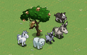 Mystery Game Animals 2